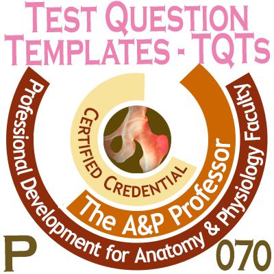 TAPP Badge P 070=1