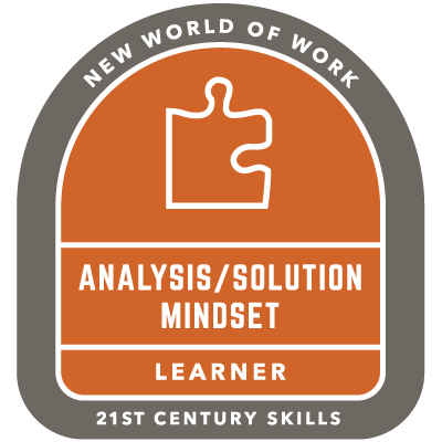 Analysis/Solution Mindset Badge